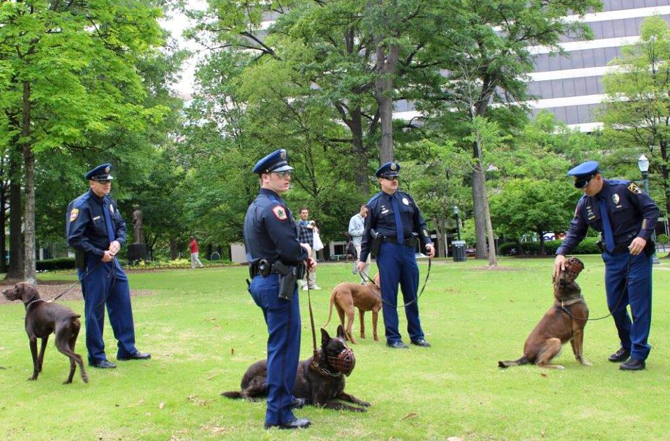 Transforming Police Dogs — It's All About the Training